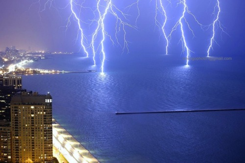 lionversusbear:  getting pictures of lightning is HARD, yo