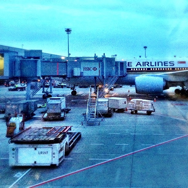 #early #morning #flightout #sq #singapore #singaporeairlines  (at Gate A12)