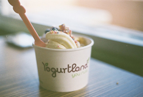prettylittlebirdhouse:  I adore yogurt. by SASSSQUATCH on Flickr.