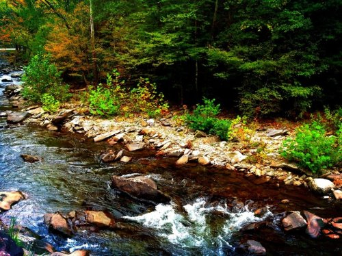 Mountain stream in Tennessee#mountains #greatsmokymountains #tennessee #stream #scenic #nature #scenery #iphone #fall #iphonesia(from @butterfield8 on Streamzoo)