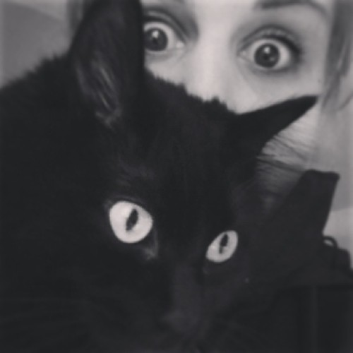 I have a cat so I can take pictures like this with a cat. #cat#weirdo#creepin'