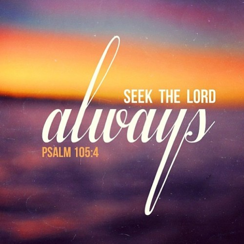 iwilltrustinyou:  Seek Him! Download the Instapray app and connect in prayer, love and support with the whole world! Available for free in iOS and android! 💙💙💙 thanks @thebelovedblog