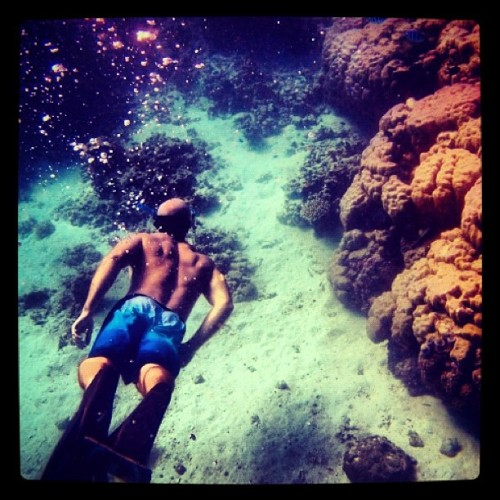 Never. Stop. Exploring… Great Barrier Reef, Australia www.fearmanphoto.com