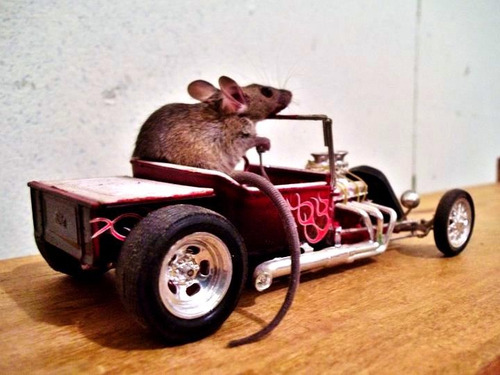 I've heard of ratrods before but this is ridiculous! lol Find us online on Twitter, Tumblr, Facebook and the web! —John