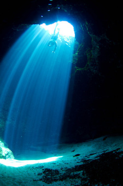 thelovelyseas:  Itchetucknee Spring, Blue Hole. Diver: Floriano Putigna by eputigna on Flickr.