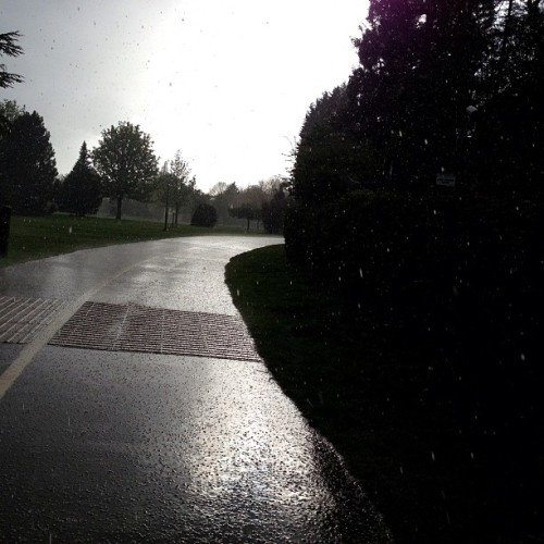 #nofilter #park #trees #hail #rain #sun #weirdweather #weather #loveit #pretty #instamood