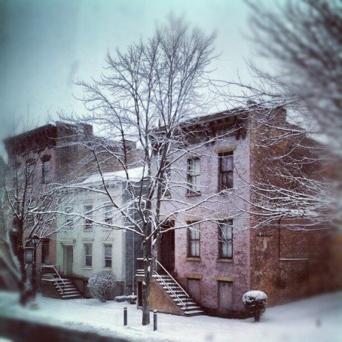 More snow! #Albany #AlbanyNY #Snow