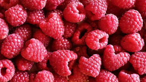 bluelungs:  red raspberries (by Lukinosity)