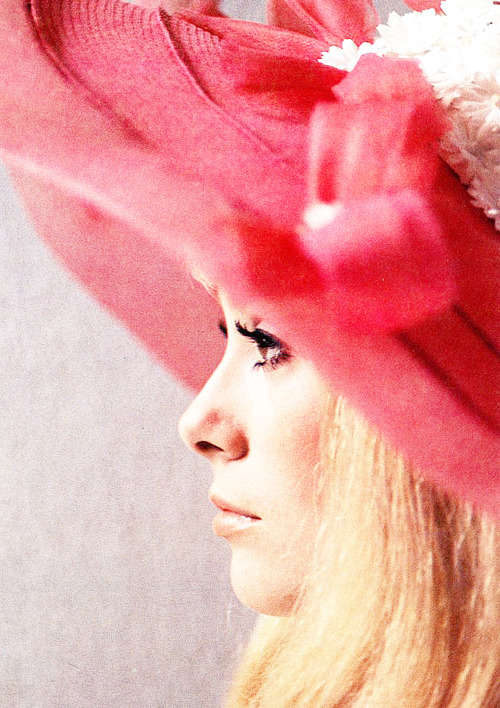 moronicalake:  1/50 photos of Catherine Deneuve   Catherine Deneuve in Les Demoiselles de Rochefort (1967)