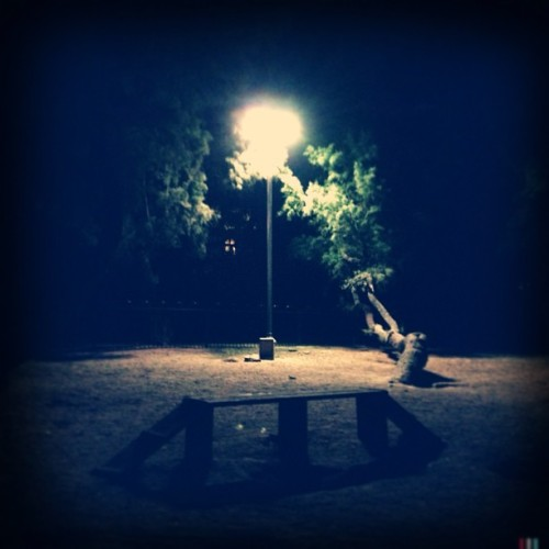 Night time #night #photo #garden #green #mysterious #view   (at Dog Park - Hadar Yosef)