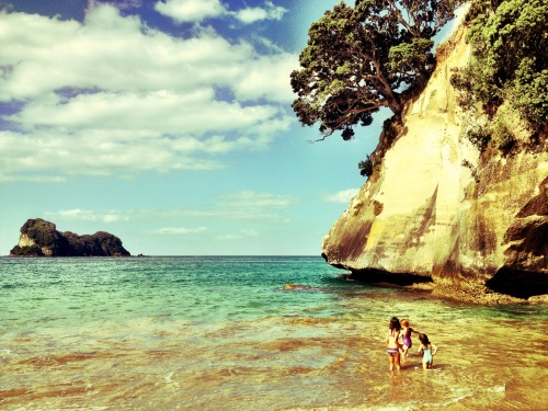 Cathedral Cove, New Zealand.  thefreshsite.com