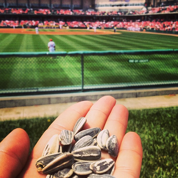 Baseball & sunflower seeds!! 🎉 #huskers