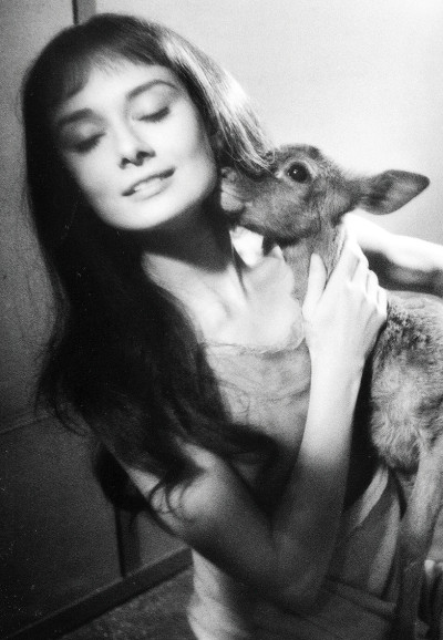 terrysmalloy:  Audrey Hepburn on set of 'Green Mansions' with her pet deer, Ip.