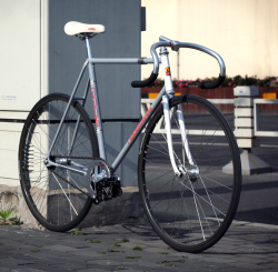 superkeirinattack:  !!! TANGY TWO TONE NASA NAGASAWA !!!