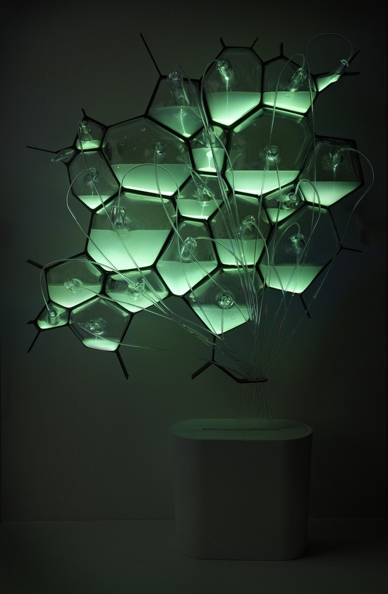 Bio-light, light fixture that runs on bacteria. via natureoflight, cmeinke
