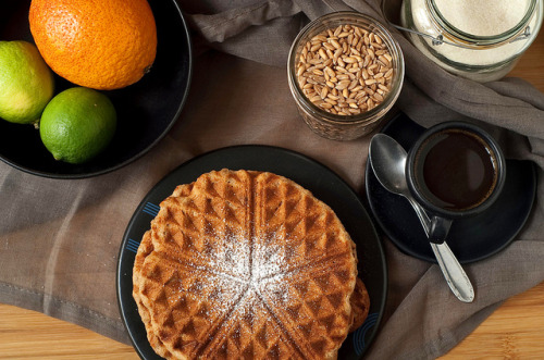 veganfeast:  Five-Grain Waffles by seitanismymotor on Flickr.