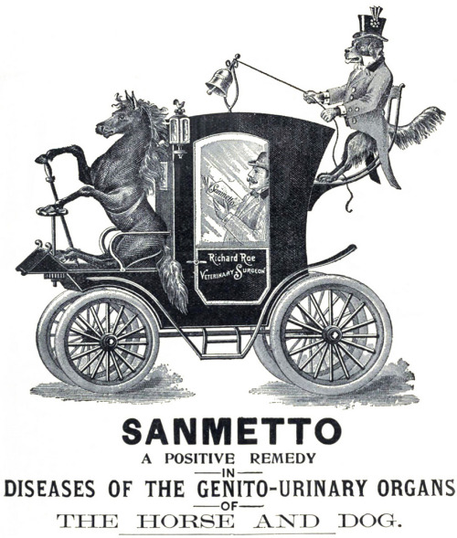 sanmetto 1908 (by Captain Geoffrey Spaulding)