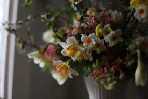 (via gearing up for the weekend @ Floret Flower Farm)