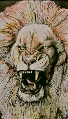 Angry Lion. watercolor, india ink