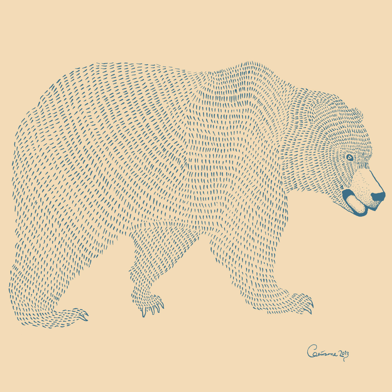 bear. drawing by geirarne/ballad of the dyeing dart frog 2013
