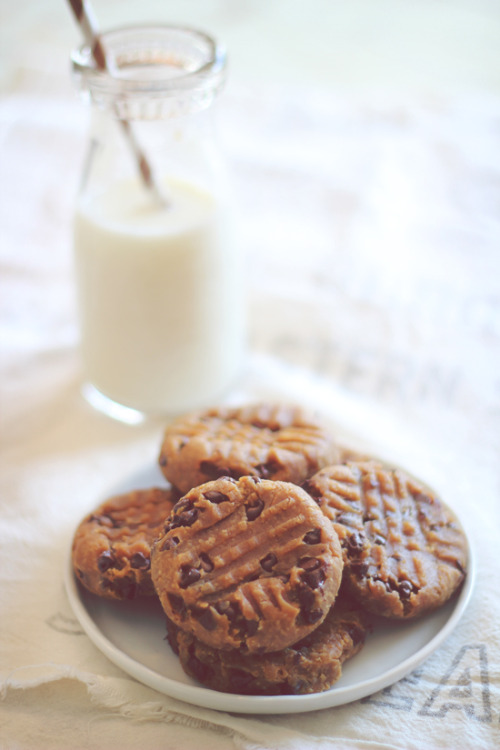 all-things-bright-and-beyootiful:  Peanut Butter Chocolate Chip Cookies via Dashing Dish  How did I never think to put chocolate chips in peanut butter cookies? Best combination ever!