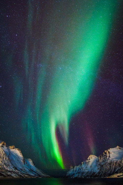 senerii:  Northern Lights by Ronel Reyes on Flickr.