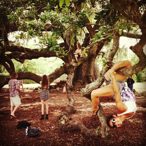 Hanging out in the park :) #regram #thetreeoflife #neworleans #withcannons