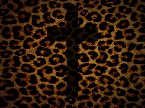 hayleybaby77:  Cheetah Cross on @weheartit.com - http://whrt.it/TUjBAG