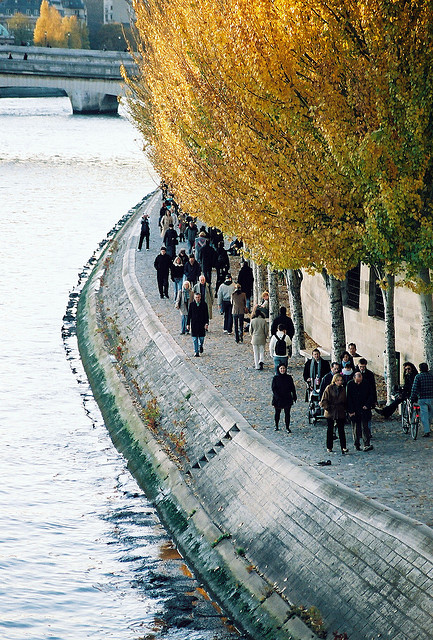 arcanja:  paris in fall by bendisdonc on Flickr.