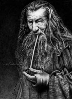 Gandalf, The Grey by *Esteljf
