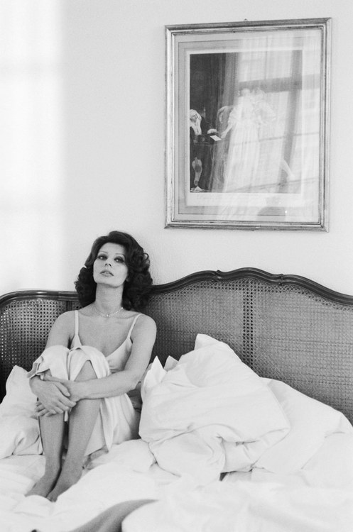 "I Spy: Headboard It's hard to take your eyes off of Sophia Loren — seen here in a photograph by Terry O'Neill circa 1965 — but we couldn't help but notice the gorgeous woven headboard behind her. As luck would have it, we found similar pieces on eBay using the phrase ""vintage cane headboard."" Click here to see.  (Photo courtesy of Terry O'Neill. Text by Jenny Bahn)"