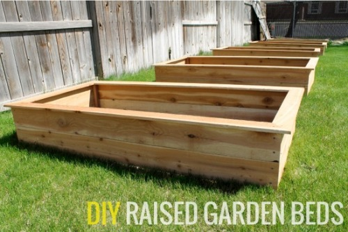 DIY Raised Garden Be http://pinterest.com/pin/149744756332924198/