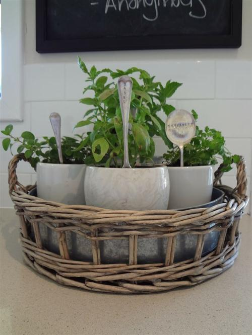 dreamydiy:  Live in a small apartment and think that there's no way you can have an herb garden at home? Think again! Check out these 15 cool kitchen herb gardens ideas… #2 is really great! Read more: 15 Cool Kitchen Herb Gardens Ideasimage credit: www.google.com.