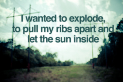 todayslyrics: requested: elbow - ribcage (picture by colin)