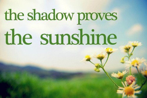 requested: switchfoot - the shadow proves the sunshine (picture by yuri)