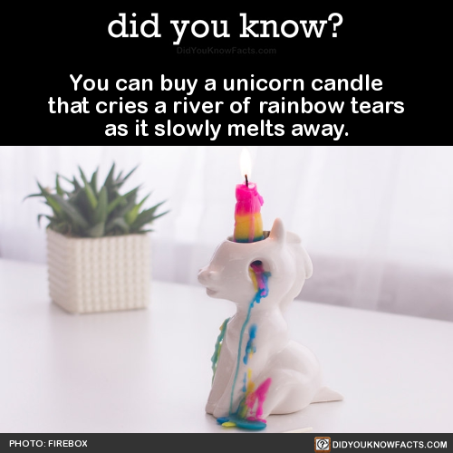 WEIRD FACT cool products mythical creatures home decor i need this in my life