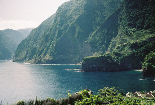 greekg0ds:  madeira by dancearoundaworldburningdown