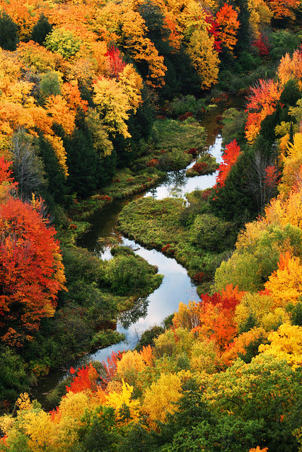 travelthisworld:  A River Runs Through It ♦ Buckshot Landing, Michigan, USA | by posthumus_cake