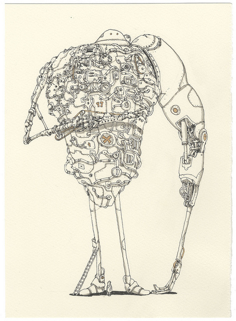 supercata:  Mattias Adolfsson - Annual checkup