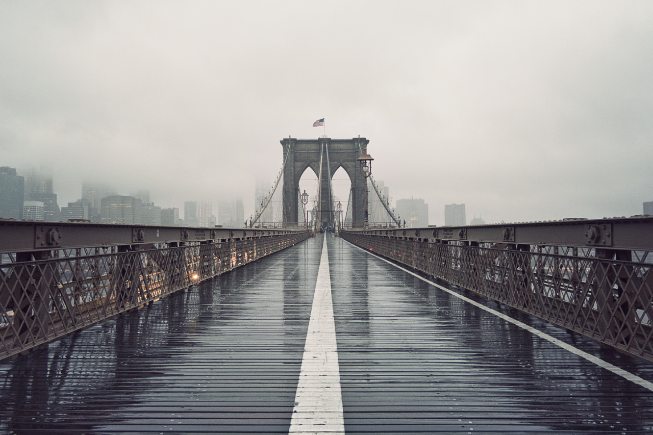 No. 272 | Brooklyn Bridge | NY Took a walk in the rain today.