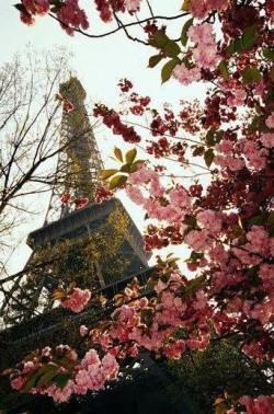 uhrskou:  paris♥ | via Facebook on @weheartit.com - http://whrt.it/10gRn1U