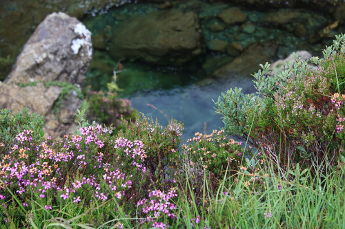 Faerie Pools, Glenbrittle, Isle of Skye, Scotland by Donnr MB on Flickr.