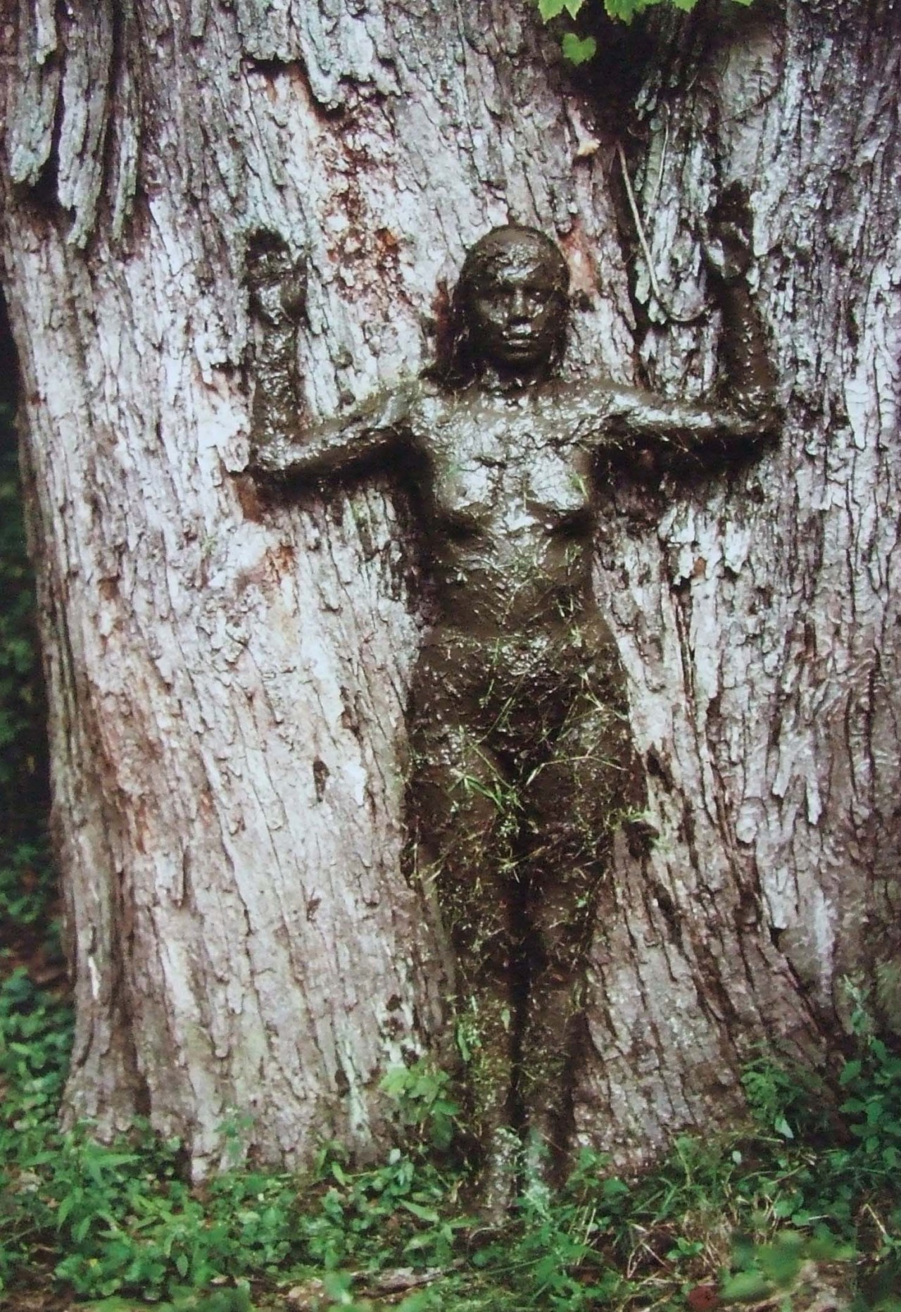 """Tree of Life"" a 1976 self-portrait by Ana Mendieta"
