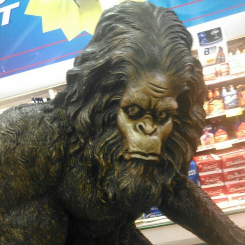 Bigfoot (at Parry's Market)