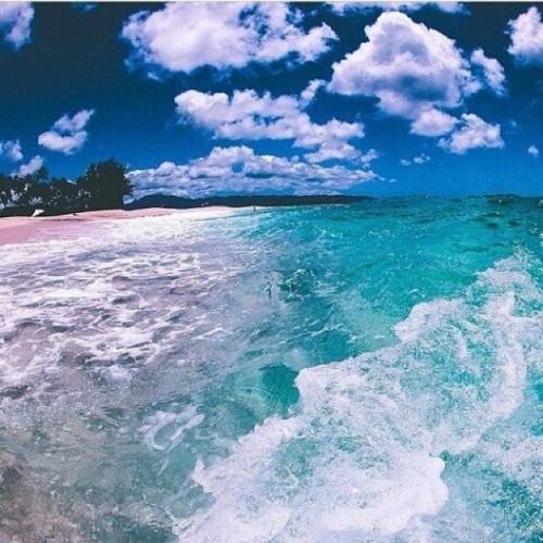 I adore  #sea #ocean #wives  انا من عشااق البحر بشكل مو طبيعي #راحه_نفسيه ❤❤🐠🐳🐬😄😄😍😘