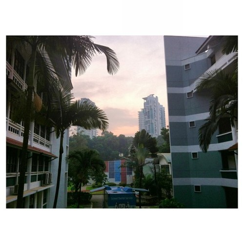 • pink sky in the morning • (at Raffles Girls' School (Secondary))