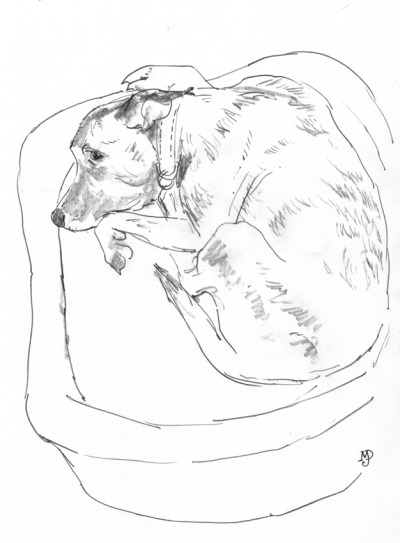 a quick warm up sketch, let sleeping dogs lie…