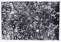 Ann Stewart, Constellation, intaglio etching