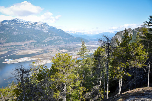 Squamish from bluff above Upper Shannon Falls (by Stephen Hui)