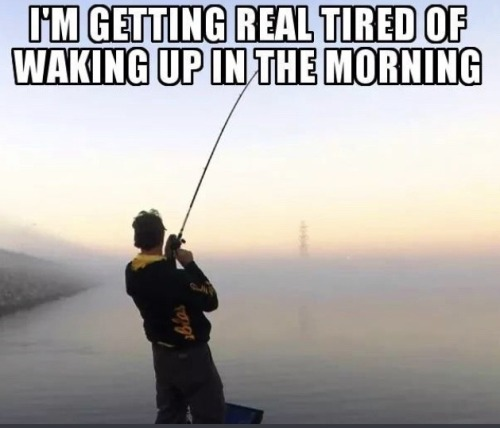 #for when youre getting real tired of waking up in the morning #reaction image#reaction meme #daily reaction images  #image mood: depression time